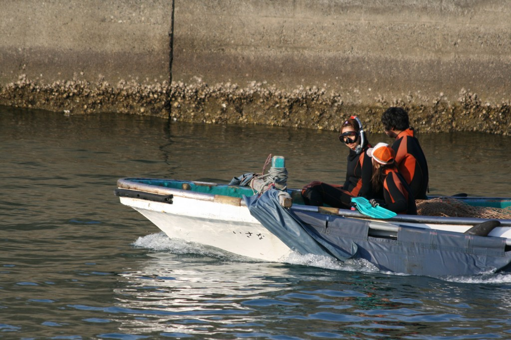 skiff with trainers and tarped dolphin for captivity