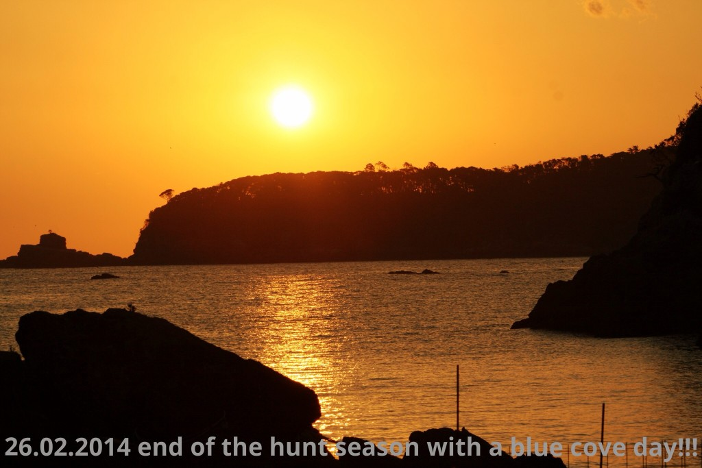 end of the dolphin hunt season - 26.02.2014!