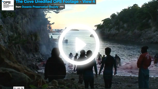 the cove unedited ops footage view 4