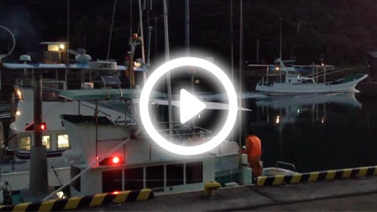 Banger boats leaving Taiji harbour!